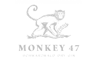 evorhei it software referenzen monkey 47